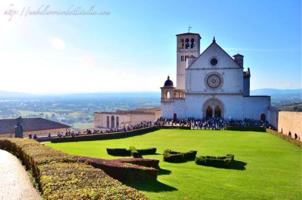 Assisi4