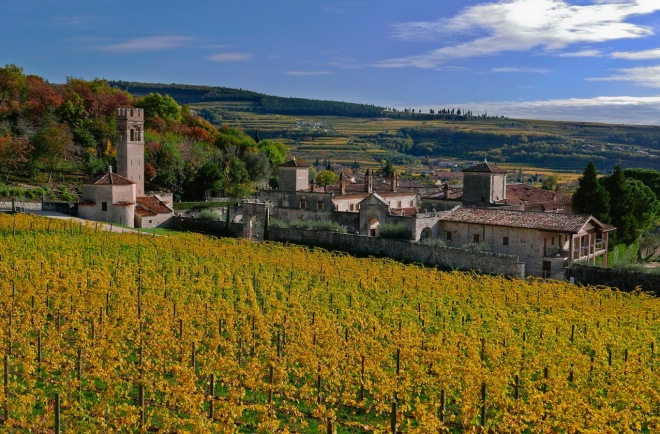 照片由Villa Della Torre Allegrini 提供
